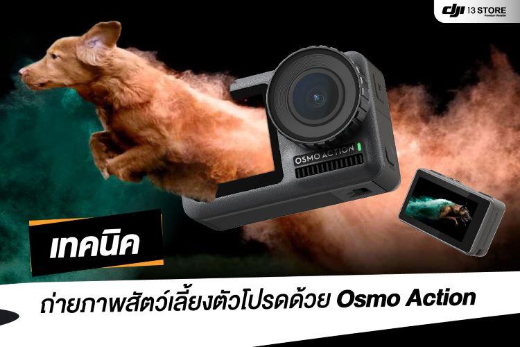 เทคนิคถ่ายภาพสัตว์เลี้ยงตัวโปรด ด้วย Osmo Action