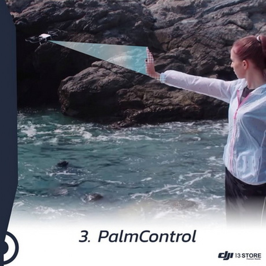 PalmControl